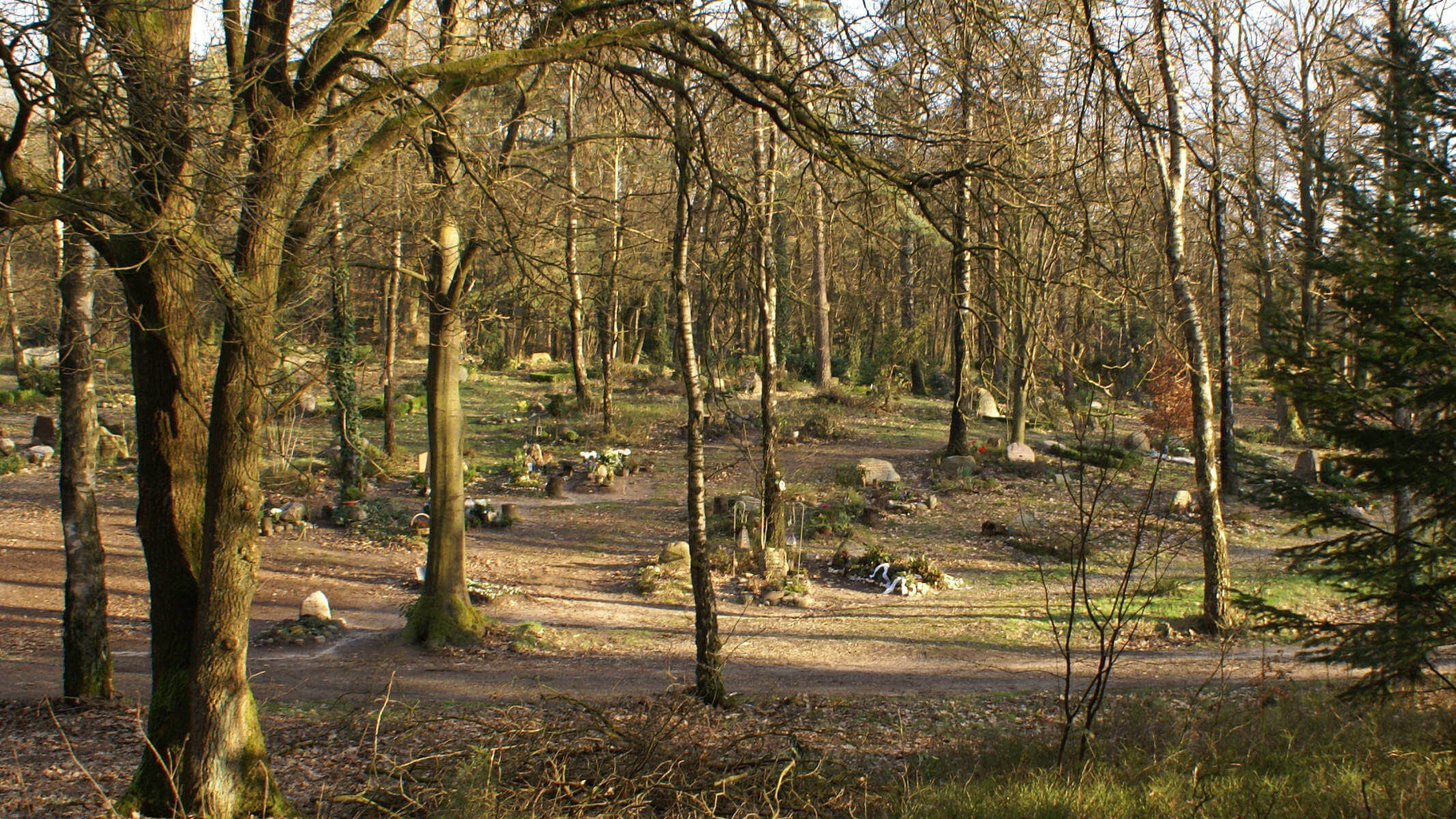 Natuurbegraafplaats Assel