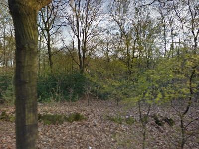 Begraafplaats Heidepol